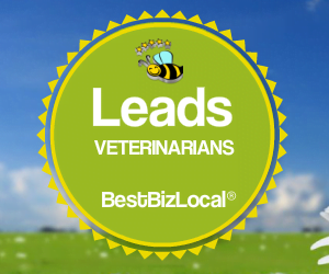 Leads veterinarians